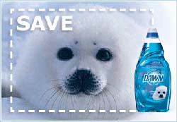 dawn dish soap wildlife seal