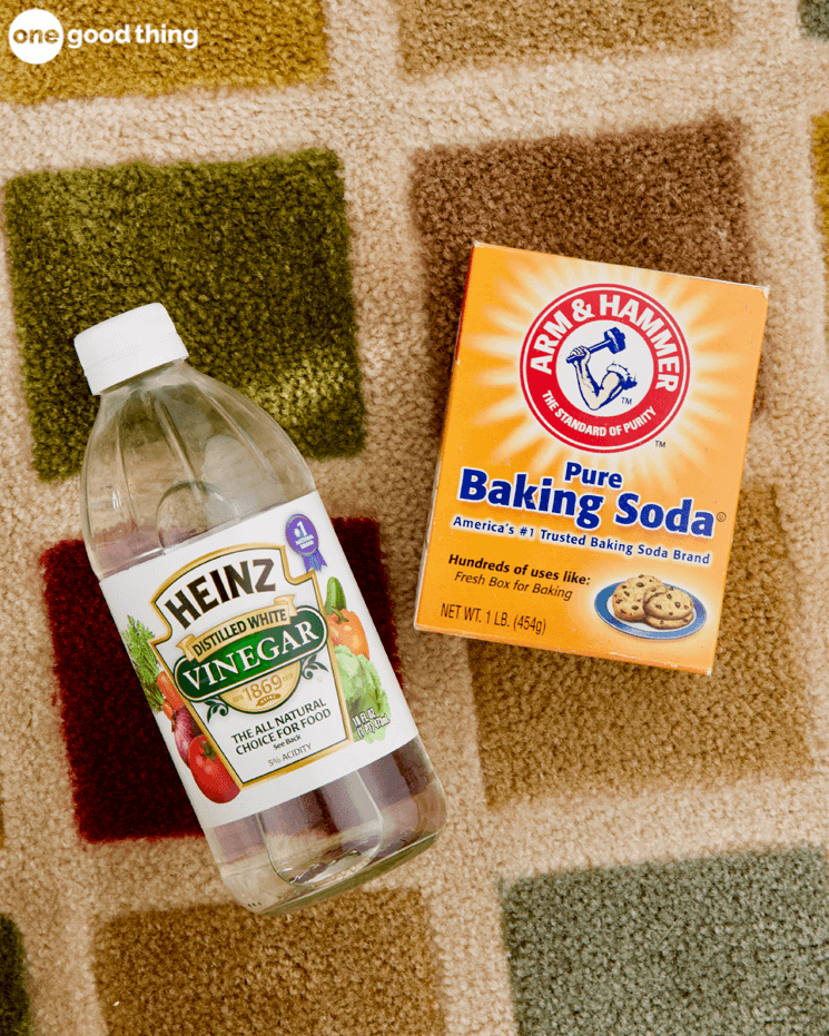 How To Clean Dog Vomit From Carpet With Baking Soda Nice